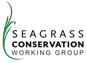 Seagrass Conservation